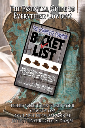 Do yourself a favor get easy gifts bucket books blog kicking the bucket list has been very popular with both people who want to downsize and family or friends suggesting downsizing it is a gift that can start solutioingenieria Choice Image